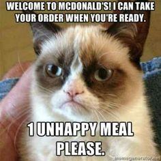 I love grumpy cat