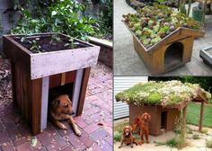 Jardiner en gardant le chien au frais