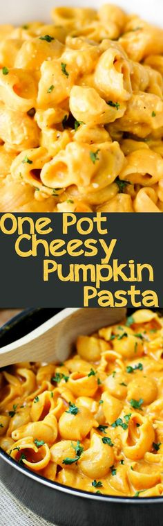 One Pot Cheesy Pumpkin Pasta is creamy and comforting with cheese and pumpkin paired together in this delicious one pot meal!