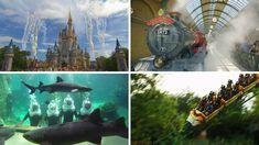 Florida is home to world-famous theme parks like Walt Disney World, Universal Orlando, SeaWorld Orlando, LEGOLAND Florida and Busch Gardens Tampa. Florida Theme Parks, Polynesian Village Resort, Busch Gardens Tampa, Legoland Florida, Disney World Vacation Planning, Seaworld Orlando, Drinking Around The World, Florida Travel, Sea World