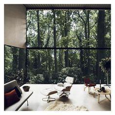 "Polubienia: 139, komentarze: 5 – yestersen - Vintage Cabinet (@yestersen) na Instagramie: ""Into the wild #eames #vintage #midcenturymodern #mcm #nature #interiorideas #interiordesign #regram"""