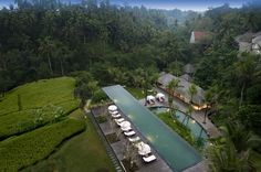 Komaneka at Bisma pool aerial  http://www.uniqhotels.com/komaneka-at-bisma