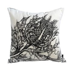Discover Timorous Beasties, the brand that has been making waves in the world of designer wallpaper and home accessories with their captivating designs. Linen Pillows, Decorative Pillows, Throw Pillows, Cushion Source, Timorous Beasties, Cushions Online, Cushion Filling, Velvet Cushions, Perfect Pillow