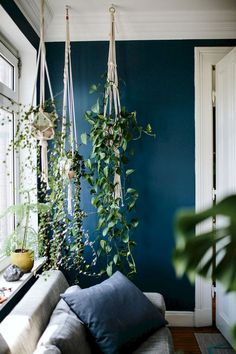 Hanging plants bring atmosphere to every home! Atmosphere Hanging plants every - - Dark Living Rooms, Living Room Plants, Bedroom Plants, Living Room Decor, Bedroom Decor, House Plants, Bedroom Wall, Dark Green Living Room, Dining Room