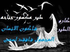 الشاعر كارم الطيراصدقاء الشعر و النثر و القصة - Google+