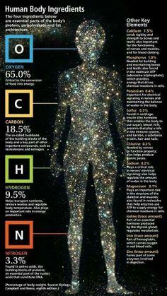 Componentes cuerpo