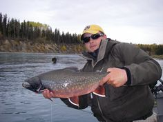 Alaska Fly Fishing!   Guided Kenai River Rainbow Trout Sport Fishing Charters with Alaska Denise Lake Lodge. www.deniselakelodge.com/alaska-fly-fishing-packages-august-september.html