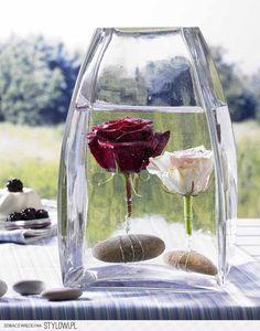 Mega róże