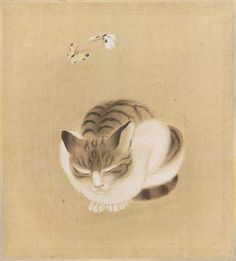 Sleeping cat with butterflies, Unidentified Japanese artist, Date: First half of the 19th century, Medium: Ink and color on silk; album leaf