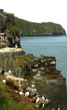 9 Best Day Trips from Reykjavik, Iceland: A Day Trip from Reykjavik to Grímsey Island