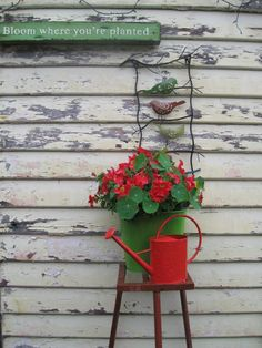 Stand is from the rubbish tip shop, container is an old plastic bucket, v cheap watering can from big name hardware store, and a few garden deco items! From a previous garden.