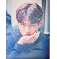Mingyu Wonwoo, Seungkwan, Woozi, Kim Min Gyu, Mingyu Seventeen, Seventeen Wallpapers, K Idols, Jaehyun, South Korean Boy Band