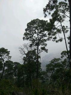 Con niebla! Al mediodía en Monte Alto