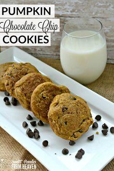 Pumpkin Chocolate Chip Cookies - One Last Pumpkin Hoo-Rah! - Sweet Pennies from Heaven
