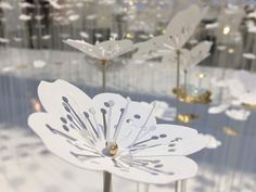 Manymany x Procédés Chenel | Jardin d'hiver : centaines de fleurs en papier sur tiges - réinterprétation des fleurs de cerisier - papier blanc et or