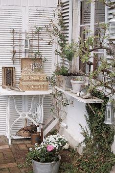 Lovely vignette of unusual planters