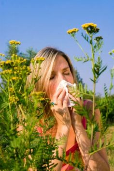 Ten Natural Allergy Relief Tips Offered by a naturopathic physician, this advice may help you alleviate the misery of spring allergies.
