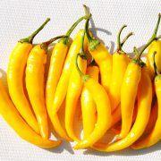 Tüzes Sárga paprika: Középzöldből sárgára érő, hegyes erős típus, 12 cm hosszú bogyót nevel, bőtermő szabadföldi fajta. Felfűzve, megszárítva, díszítésre, ételek ízesítésére egész évben használható. Banana, Stuffed Peppers, Fruit, Vegetables, Food, Red Peppers, Stuffed Pepper, Essen, Bananas