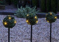 Cool garden lighting idea gardenlighting outdoorlighting