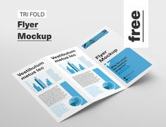 Free Tri Fold Flyer Mockup on Behance