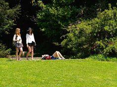 Parques e jardins em Lisboa - os melhores da cidade