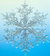 flocon de neige microscope