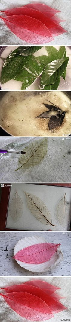 Simmer thick leaves in a baking soda mixture.  It should leave behind the skeleton of the leaf which you can then lightly paint or dye.