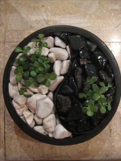 Feng Shui Concepto Natura: diseño de jardines de mesa personalizados en base a astrología china y feng shui. Mónica Koppel