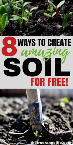 Vegetable Gardening For Beginners Gardening Tips: Learn how to amend your vegetable garden soil for free with these 8 ways to create amazing fertile soil for free. Vegetable Garden Soil, Vegetable Garden Planner, Gardening Vegetables, Veggie Gardens, Raised Garden Bed Soil, Planting Plants, Small Vegetable Gardens, Fruit Garden, Raised Bed