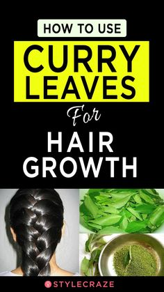 Hair Care Products : How To Use Curry Leaves For Hair Growth - Beauty Haircut Stop Hair Loss, Prevent Hair Loss, Yogurt For Hair, Diy Hair Spray, Ayurvedic Hair Oil, Sleep Hairstyles, Reduce Hair Fall, Hair Tonic, Extreme Hair