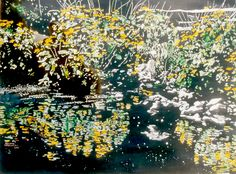 fine art: exploration of light and water Marsh Marigold, Arches Paper, Ponds, Moonlight, City Photo, Reflection, Paintings, Watercolor, Fine Art