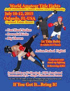 17th Annual ICMAC/WSL Sanda-Sanshou World Championship - July 10-12, 2015