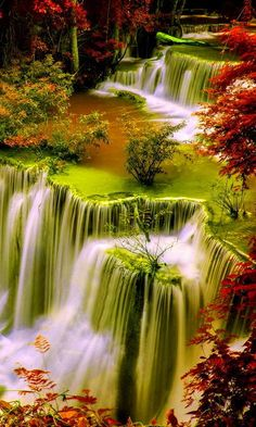 This wallpaper is shared to you via ZEDGE Wallpaper Nature Flowers, Beautiful Landscape Wallpaper, Beautiful Flowers Wallpapers, Beautiful Photos Of Nature, Beautiful Flowers Garden, Scenery Wallpaper, Beautiful Landscapes, Beautiful Gardens, Beautiful Pictures