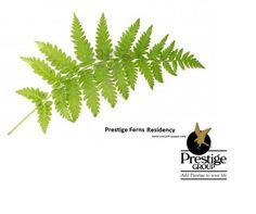 Prestige ferns residency midst of the lively city of Thane, facing the Sanjay Gandhi National Park lies Prestige Residency. Phase I of the project, consisting of 17 housing buildings is completed and fully functional. Now being launched is Phase II, having 5 multi-storied towers. 08971315026 - http://prestigefernsresidency.propertytimes.org