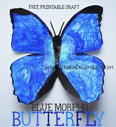 Printable Blue Morpho Butterfly Craft from LearnCreateLove.com