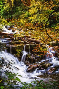 Cascades In Autumn is a photograph by Debra and Dave Vanderlaan. Beautiful whitewater cascades of cool clear water run over the dark granite rocks as colorful maple trees sway gently overhead in the mist of the rapids. This gorgeous spot is in the Cherokee National Forest of Tennessee at Coker Creek Falls. Source fineartamerica.com