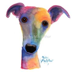 WHIPPET / GREYHOUND 'PANSY' By Shirley MacArthur♥♥