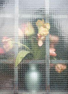 flowers in the window by jennilee marigomen / via @Jessica Comingore.