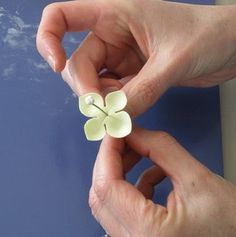 The Petalsweet Blog: HYDRANGEA TUTORIAL PART ONE by Petalsweet Cakes