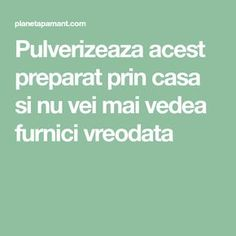 Gardens Discover Pulverizeaza acest preparat prin casa si nu vei mai vedea furnici vreodata Good To Know Cleaning Hacks Diy And Crafts Tips Design Healthy Amazing House Houses Hacks Diy, Cleaning Hacks, Good To Know, Diy And Crafts, Health, Interior, Medicine, Houses, Insects