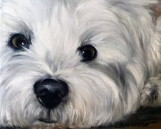 PRINT Westie West Highland Terrier Dog Art by Mary Sparrow of Hanging the Moon Studio