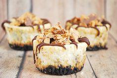 mini pb cheesecakes