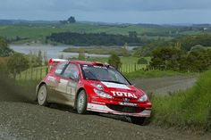 Marcus Gronholm Peugeot 206 WRC 2003 World Rally Championship Round