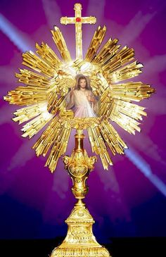 The Blessed Sacrament Jesus Christ Quotes, Pictures Of Jesus Christ, Religious Pictures, Catholic Religion, Catholic Art, Religious Art, Catholic Saints, Divine Mercy Image, Jesus Photo