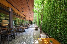 80 Impressive Climber and Creeper Wall Plants Ideas - Rockindeco Small Courtyard Gardens, Small Courtyards, Vertical Gardens, Small Gardens, Ficus, Plant Wall, Plant Decor, Landscape Architecture, Landscape Design