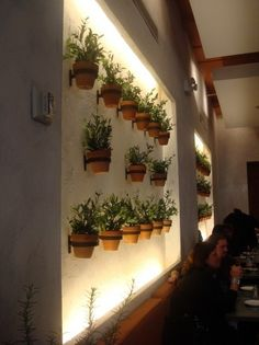 Wall mounted tera cotta potted plants