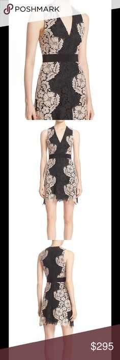 """🆕 Alice + Olivia Patrice two tone lace cocktail Two-tone patterning traces a shapely silhouette for a darling lace dress detailed with a sharp V-neckline and a softly scalloped hem. A wide grosgrain band accentuates a slender waist.  36"""" length.  Exposed back-zip closure.  V-neck.  Sleeveless.  Fitted waist.  Stretch lining.  100% polyester.  Dry clean.  Brand new with tag. Retail price $440. Alice + Olivia Dresses"""