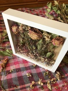 Wedding Hall Decorations, Valentine Decorations, Drying Roses, Memory Frame, Better Life, Dried Flowers, Cafe Decoration, Dream Wedding, Creations