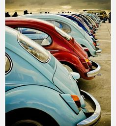 Beetles Auto Volkswagen, Vw T1, Vw Bugs, My Dream Car, Dream Cars, Van Vw, Vw Camping, Kdf Wagen, Vw Vintage