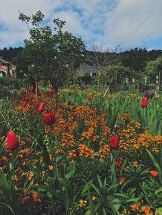 Claude Monet, Gallery, Garden, Bonjour, Garten, Roof Rack, Lawn And Garden, Gardens, Gardening